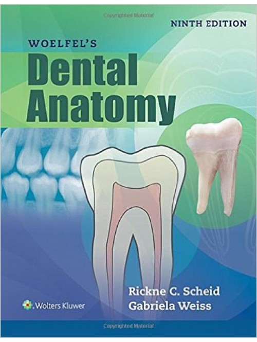 Woelfel\'s Dental Anatomy